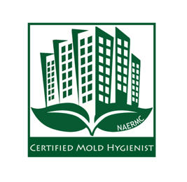 Venture Construction Group of Florida Gains Advanced Certifications in Mold Remediation