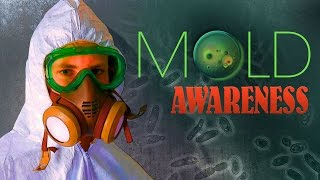 September is Mold Awareness Month!